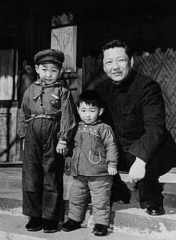 习远平评价《习仲勋画传》:描绘出父亲的音容笑貌